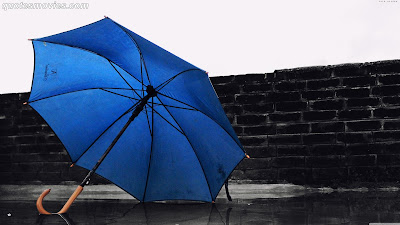 Free best wallpaper Umbrella