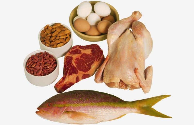Hasil gambar untuk makanan mengandung protein