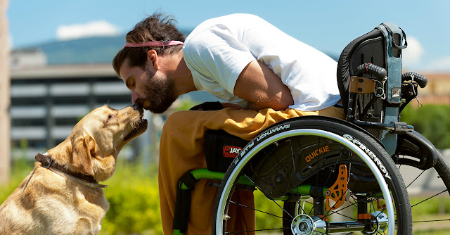 Guía sobre Perros de asistencia para personas con discapacidad