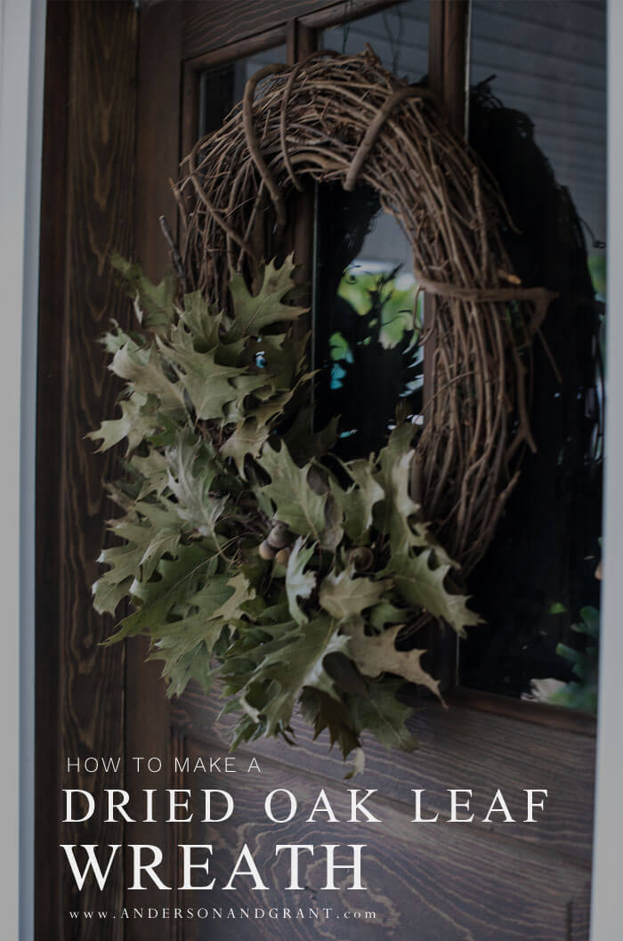 Easiest fall wreath tutorial ever using a grapevine wreath and preserved green oak leaves.