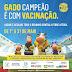 Primeira etapa da Campanha de Vacinação contra Febre Aftosa acontece até dia 31 de maio em Ponto Novo