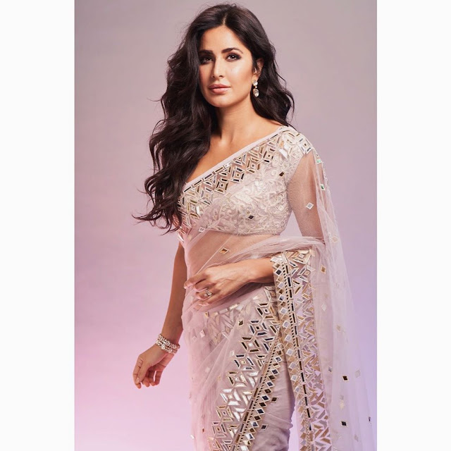 Katrina Kaif (Indian Actress) Wiki, Age, Height, Boyfriend, Family and More...