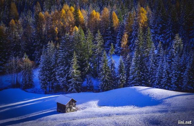 ảnh ngôi nhà đơn độc giữa mùa đông