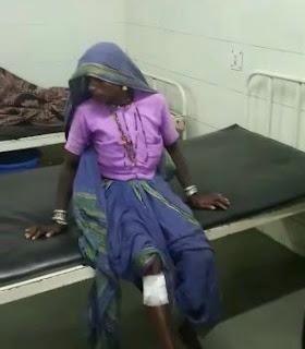 तेंदुए ने किया महिला पर हमला महिला घायल
