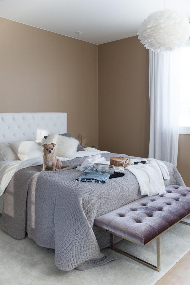 Villa H, chihuahua, makuuhuone, sisustus, pakkaaminen
