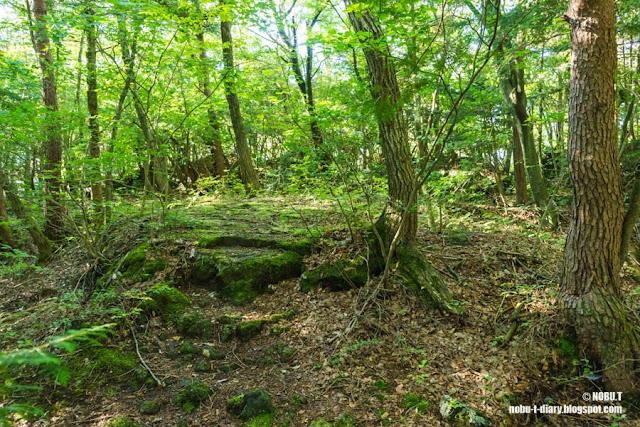 鳴沢の溶岩樹型