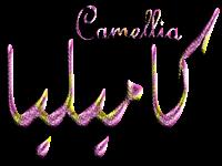 Camelia, Kamelia, كاميليا, كميليا,
