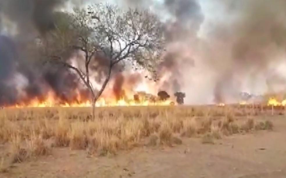 Mais três áreas de vegetação são atingidas por incêndio no oeste da Bahia