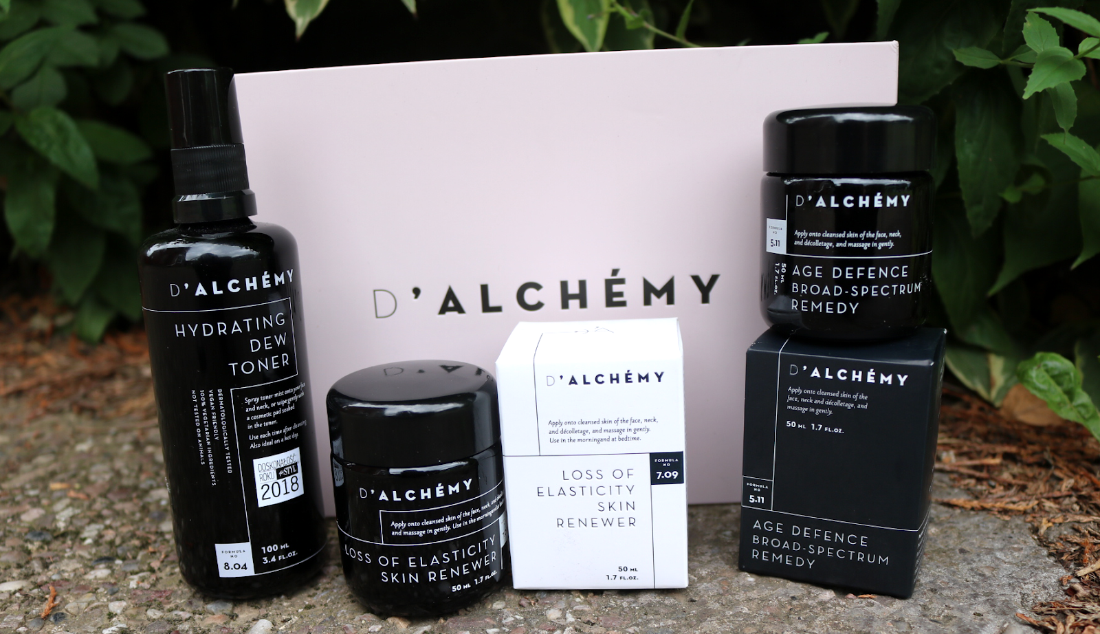 Introducing: D'ALCHÉMY Holistic Skincare review