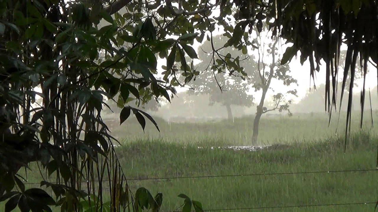 farm-and-rain