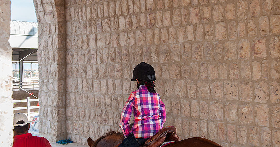 Umm Maimoonah S Journal Horse Riding Lessons