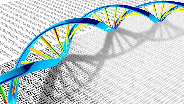 New technology enables rapid sequencing of entire genomes of plant pathogens
