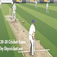 Play 20-20 Cricket Game