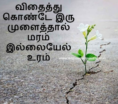 Inspirational quotes In Tamil with image