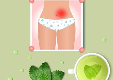 Receita Contra Cólica Menstrual: Chá de Melissa