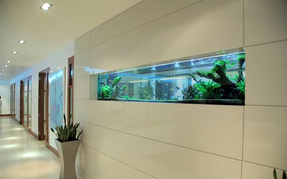 How to make wall aquarium and wall fish tank diy for Wall hanging fish tank