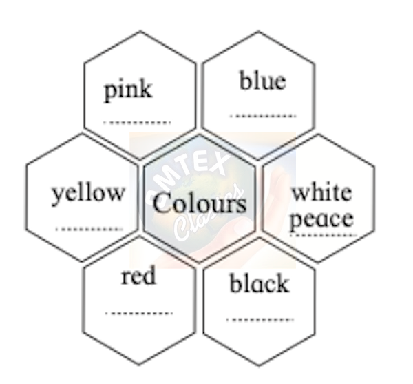 Colours mentioned in the hexagons given below are associated with something or the other. Discuss with your partner and fill in the blanks.