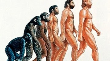 Asal Mula Manusia, Teori Evolusi Darwin vs Nabi Adam a.s