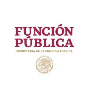 Acuerdo por el cual se emitió el formato de Declaración de Situación Patrimonial e Intereses
