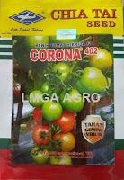 Benih tomat, Tanaman tomat, Tomat Corona F1, Corona F1, Bisi, Bisi International, Kapal Terbang, Harga Diskon, Harga murah, LMGA AGRO