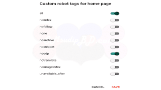 Enable Custom Robots tags for homepage
