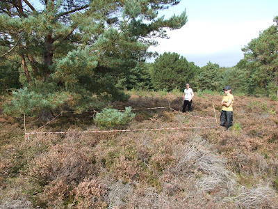 Belinda and Natasha with a quadrat taped up at Thurstaston Common