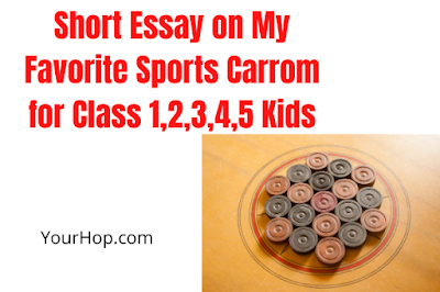 Essay on My Favorite Sports Carrom