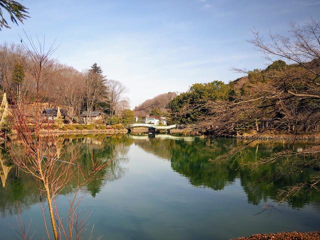 薬師池公園 安土桃山時代に開拓された薬師池を中心とした四季折々の花や自然が楽しめる公園