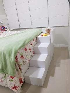 escadas ortopédicas para cães pequenos