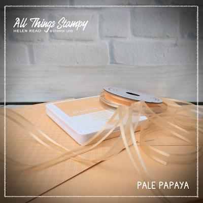 Stampin Up Pale Papaya In Colors 2021
