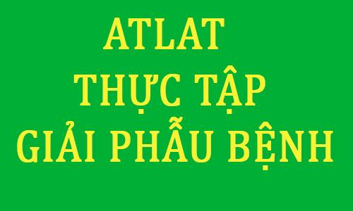 atlat thực tập giải phẫu bệnh pdf - y khoa pham ngoc thach