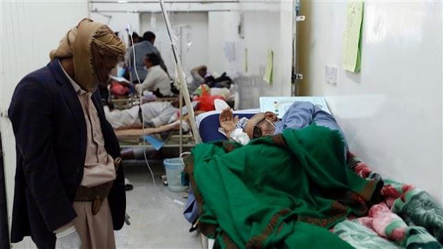 Cholera has killed 242 in Yemen: World Health Organization