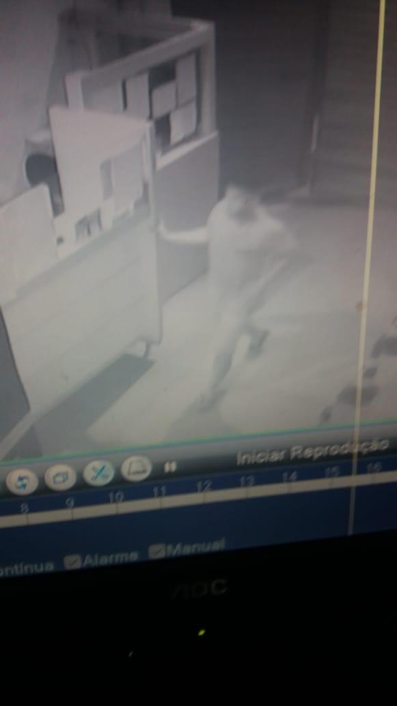 Mercadinho foi alvo de bandido na madrugada desta sexta-feira em Cajazeiras