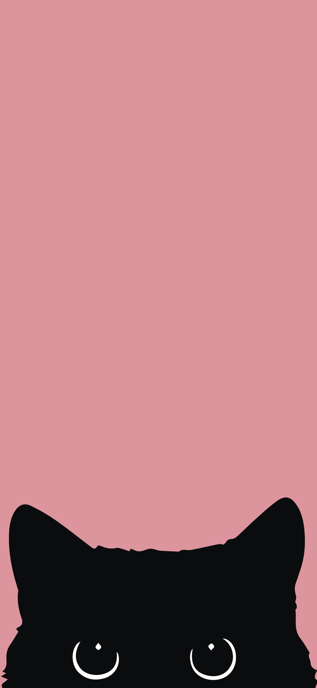 cute wallpaper hd for mobile phone black cat
