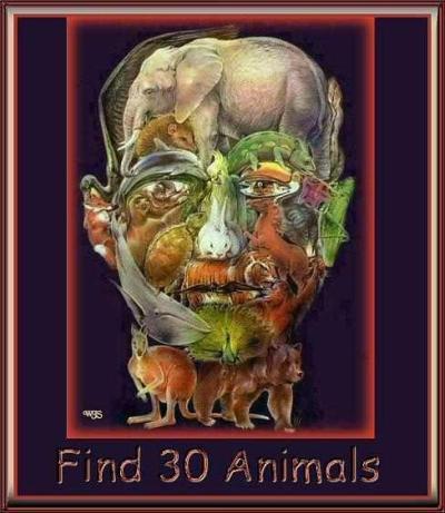 Find 30 Animals!