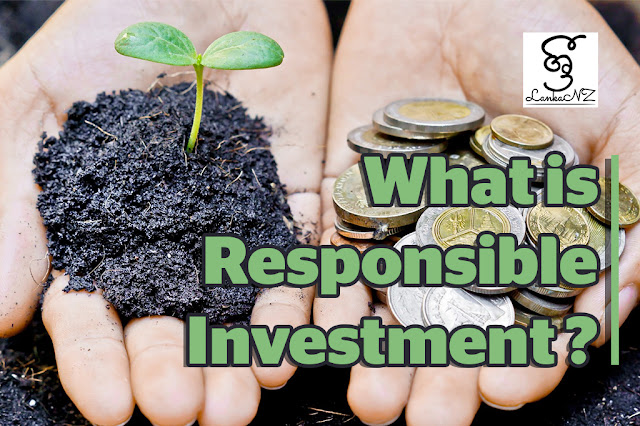 What is responsible investment and why does it matter? Article by Buddhima Wickramarachchi