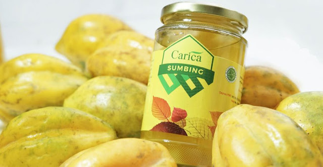 carica-the list of indonesian fruits