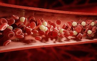 تعرف على اخطر 7 من اسباب ضعف الدورة الدموية