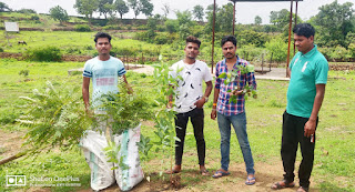 विश्व हिंदू परिषद बजरंग दल प्रखंड द्वारा किया गया वृक्षरोपण