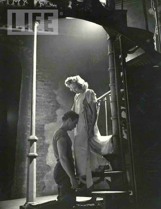 cranes are flying: A Streetcar Named Desire