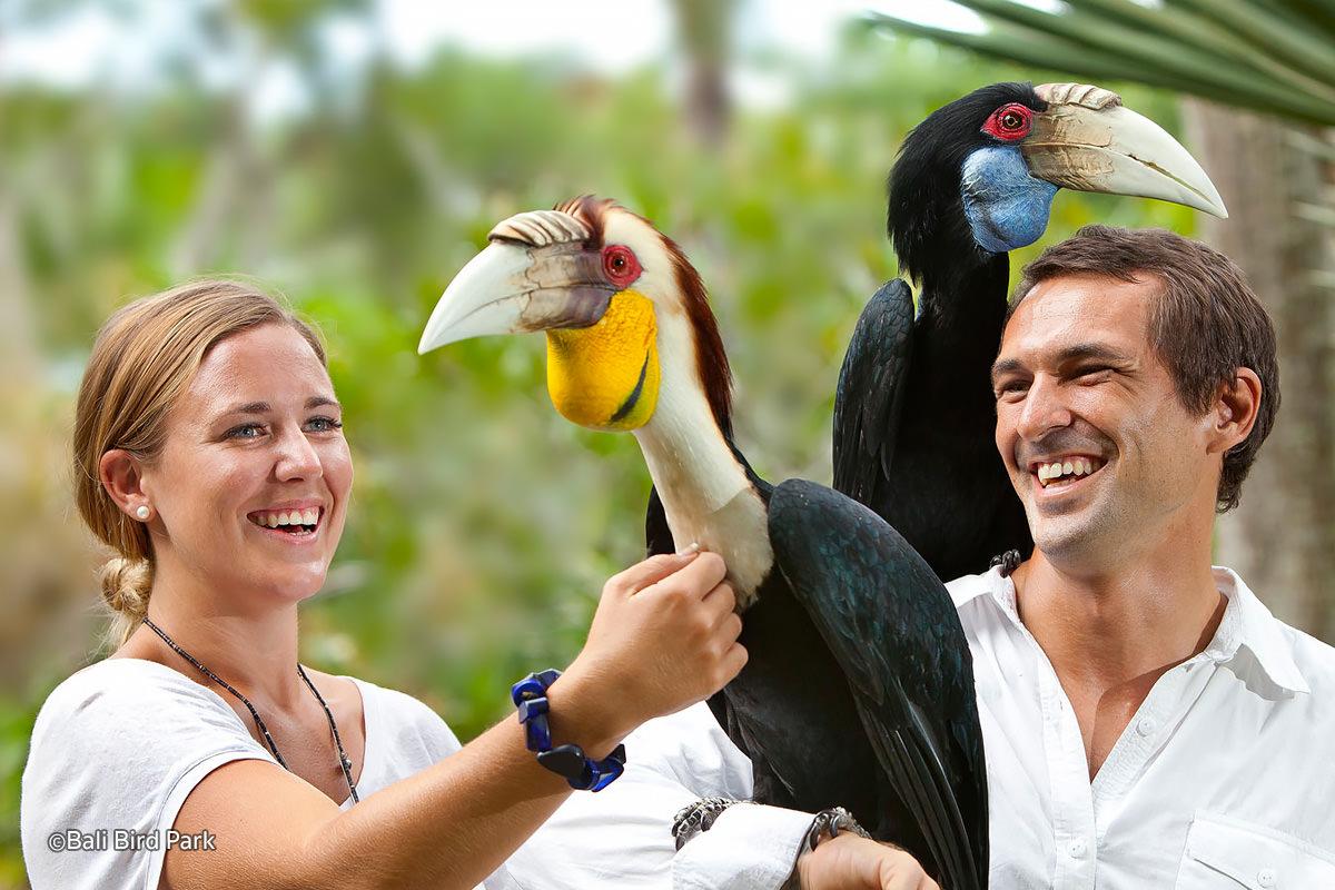 Tempat Wisata Keluarga Bali Bird Park