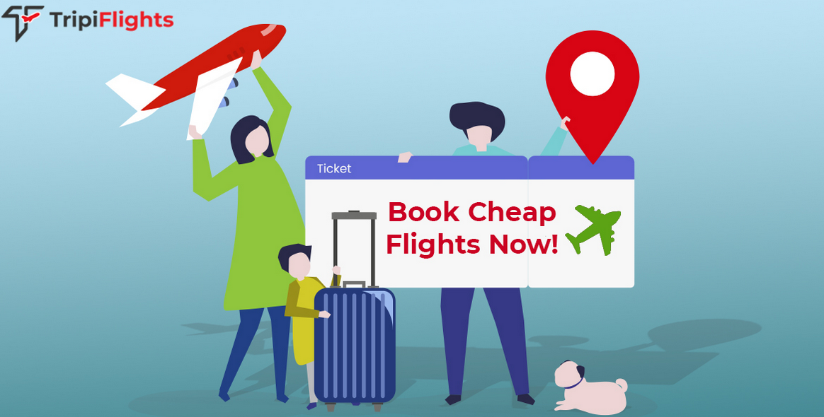 Tripiflights - Find cheap flight deals. Save Big on Domestic, International Flights