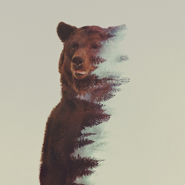 Andreas Lie Bear Double Exposure