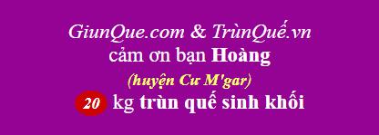 Trùn Quế huyện Cư M'gar