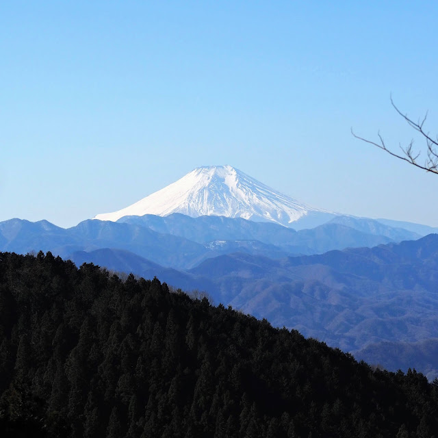 和田峠裏の富士山展望ベンチ