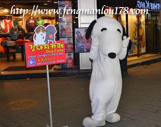 Dog Themed Cafe