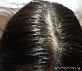 Schwarzkopf Pure Color Saç Boyası renkleri