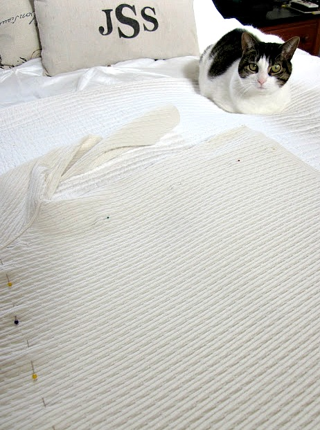 white sweater on the bed with a cat