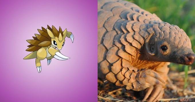 Pokemon-go-Sandslas-Trenggiling