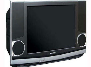 TV Biasa